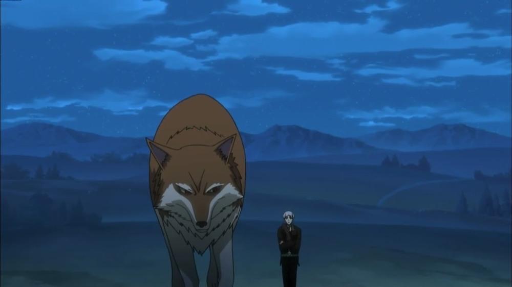 In ihrer Wolfsform wirkt sie gleich beendruckender (Bild von dusub.blogspot.com)