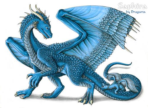 Mit der Drachendame Saphira sollte man sich besser nicht anlegen (Bild von Dragarta)